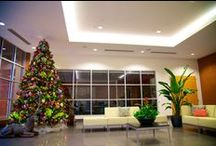 """Holiday Decor / No one does Christmas Decorating like Interior Plantscapes! Whether it's a simple poinsettia in your lobby or an entire holiday makeover, our design professionals have an eye for what will transform your space into a holiday wonderland. From building interiors and exteriors to everything in between, Interior Plantscapes is proud to be recognized as the ultimate source """"for business"""" holiday design firm."""