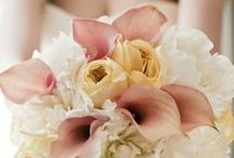 Pale gold and blush pink wedding