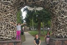 Jackson Hole Fan Photos / A place to share your pics!