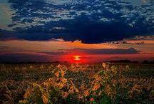Sun, Moon and Stars / by Ivy Greene