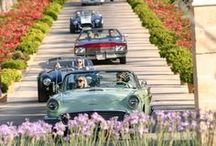 Classic Car Club Mallorca / Cruise to a Michelin Star - event on July 27, 2014. 16 Classics and 3 modern cars took a leisurely drive via two check points and questions to finish at a car show in the spectacular surroundings of Castell Son Claret in Capdella.