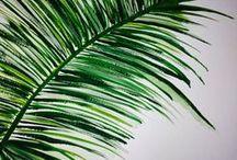 Óriás levelek - Jungle style