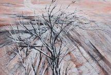 ENCAUSTIC / my encaustic painting