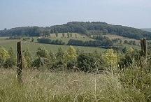 Wandelen rondom Altembrouck / Landgoed Altembrouck ligt midden in een grensoverschreidend natuurgebied van 300 hectare. Een ongerepte natuur waar je heerlijk kunt wandelen.