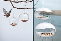 Pets and birds accessories