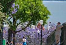 Lisboa e os Jardins