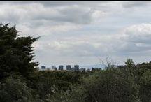 Lisboa e o Parque Florestal de Monsanto / Mostrar o espaço florestal da cidade, nas suas diversas valências.
