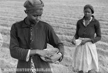 Black History / by Mz. Kim Jones