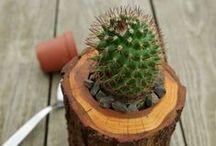 z drewna naturalnie / Wyroby z drewna: doniczki, pojemniki, ozdoby - naturalnie piękne i całkowicie niepowtarzalne.