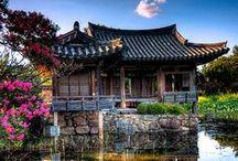 Korea / Inspiration and travel tips for visiting South Korea