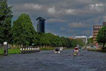 Laak / Stadsdelen in Den Haag: Laak omvat Laakkwartier, Spoorwijk en Binckhorst. / by Bibliotheek Den Haag