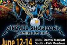 2015 Rocky Mtn. Pinball Showdown and Gameroom Expo / Play 150+ pinball machines & classic arcade games June 12-14, 2015, in Colorado. Play games, meet fellow gamers, see movies & seminars, buy & sell machines.
