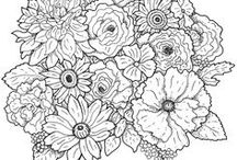 Colouring Pages for Adults / Adult colouring