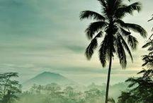 Bali | dream