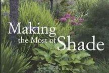 Shade garden / Ideas for back yard