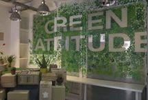 Green Attitude // Le vernissage / Exposition de fin d'année 2013-2014