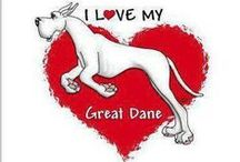 Gr8 Danes / by Tammy Bowers