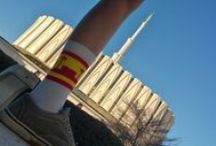 LDS Temple Trips / Taking one temple to visit another.