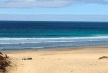 Fuerteventura / Wir sind dem kalten Winter entflohen und auf den Kanaren gelandet