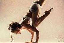 Gym/Workout / gym - workout