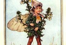Cecily Mary Barker / fairy's