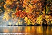 Fall Foliage Trips / Best places to see fall's gorgeous color in Oklahoma and neighboring states.