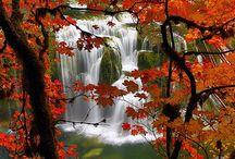 waterfalls / by karen jordan