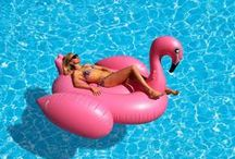Pool Toys / Great pool toys for your new pool.