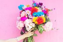 FLOWERS / floral images, bouquets, flowers and floral decorations full of beautiful colour.