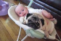 Kids & Pets: As Cute as It Gets!