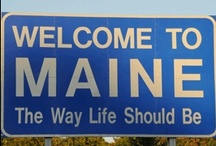 Our Maine Adventure