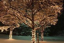 Christmas Ideas / by Morgan Hartgrove