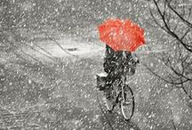 AND DUTCH - Winter Wonderland / Cycling in winter can be so beautiful