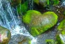Cœurs  naturels