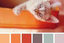 Fargekombinasjonar