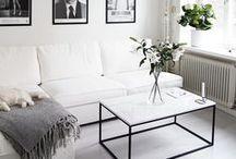 Living Room / Hall