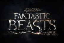 Fantastic Beasts and Where to Find Them Animais fantasticos