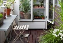Gardening in Small Spaces / If you live in a multi-family home or you're just short on time, container gardening can be just as fun and rewarding as a yard full of plants. #smallspaces