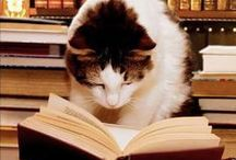 The Literary Cat