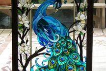 پرندگان  Peacock  پرندگان / پرندگان