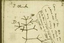 Trees of life / Phylogeny & cladistics