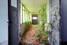 Past Lives Part 1 / by Christie Wilbur