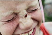 Hello Lady Bug!
