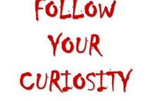 I HAVE NO SPECIAL TALENT I AM ONLY PASSIONATELY CURIOUS - Albert Einstein - / by PIN AND BUILD YOUR IDEA