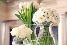 Jardim / Se minha casa não tem flores ela não está arrumada.... / by Helena Fabiani