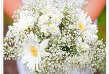 Hochzeit Ellen