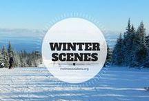 Scènes d'hiver / Tableau collaboratif sur le thème de l'hiver. Photos prises sous la neige et coups de coeur de destinations hivernales. Vous souhaitez collaborer?  Écrivez-moi : Jennifer Doré Dallas