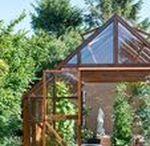 Drivhuse | Greenhouse / Et drivhus fås i mange former og størrelser og kan udnyttes til flere formål