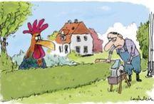 Dyr i hus og have / Kæledyr og husdyr - hvad må man, og hvad må man ikke, gode råd