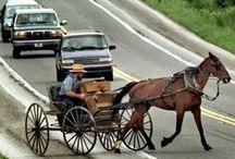 Amisze- Amish